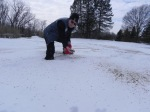 Letting winter scarify seeds